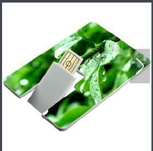 Card USB Flash Drives with Both Side Full Color Printing Logo pictures & photos