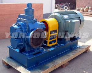 Stainless Steel Gear Oil Pump, Gear Oil Pump pictures & photos