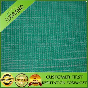 Best Selling Plastic Construction Net pictures & photos