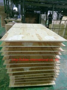 Buyer′s From Russia for Pine Plywood pictures & photos