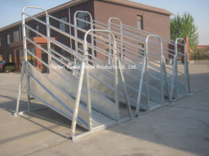 30X60mm Livestock Cattle Panel with Gates/Super Heavy Duty Livestock Cattle Yard Panels/Cattle Panels Factory/5 Bar Cattle Rail 1.6m High Cattle Panel pictures & photos