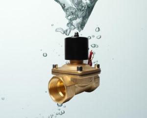 2W500-50 2 Inch Water Valve Solenoid 220V AC
