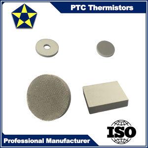 High Quality Standard PTC Thermistor for Refrigerator