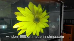 Adhesive Transparent Window Film / Holographic Projection Foil pictures & photos
