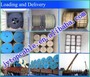 N2xsyry 10 Kv XLPE Insulated Round Steel Wire Armoured Single Copper Cable pictures & photos
