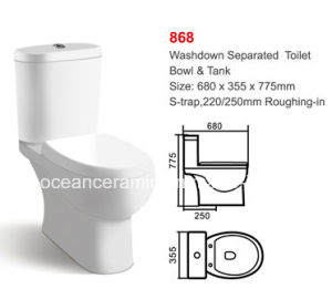 868 Hot Sale Ceramic Washdown Two-Piece Toilet pictures & photos
