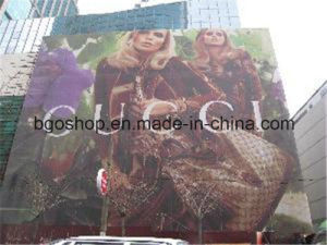 PVC Digital Printing Plastic Mesh Canvas (500X1000 18X12 270g) pictures & photos