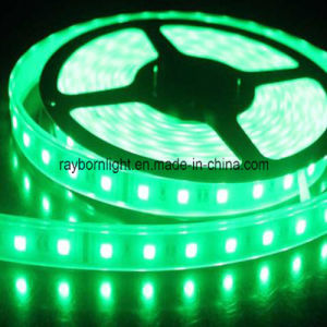 Waterproof DC12V/24V 3528SMD 5050SMD Flexible RGB LED Rope Tape Light pictures & photos