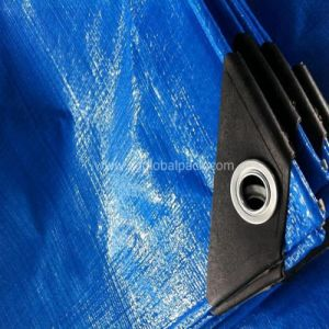 Blue Color Waterproof PE Tarpaulin with Eyelets pictures & photos
