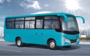 China 7.3m 30 Seats Bus/City Bus/Bus for Sale pictures & photos