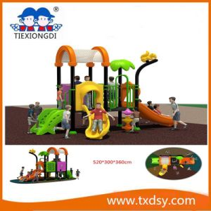 China Amusement Park Outdoor Playground Equipment Txd16-Bh10802 pictures & photos
