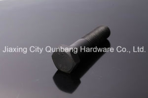 """Heavy Hex Bolts ASME B18.2.1 1/4""""-2"""" Gr. 2/5/8 pictures & photos"""