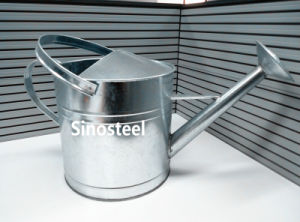 Galvanized Zinc Metal Watering Can 9L pictures & photos
