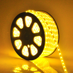 5050SMD 110V/220V LED Light ETL LED Strip LED Lighting pictures & photos
