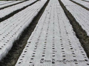 Spunbond Nonwoven Fabric for Mulch pictures & photos