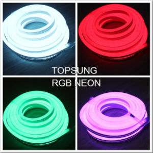 Festival RGB LED Neon Light SMD5050 for Decoration