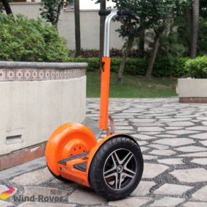 Cheap Electric Chariot Self Balance City Electric Scooter pictures & photos