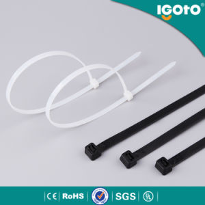 Friendly PA 66 Nylon Cable Ties pictures & photos