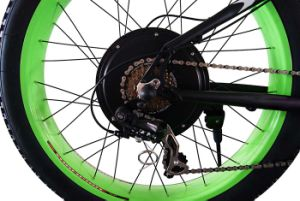 48V 750W Wheel Hub Motor Electric Fat Tyre Bike pictures & photos