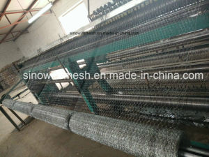 Sailin Factory Hexagonal Wire for Netting pictures & photos
