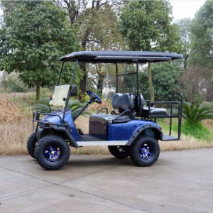 Good Quality Customized 4 Seats Electric Hunting Vehicles pictures & photos
