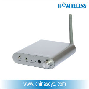 2.4GHz Digital Wireless Audio Amplifier pictures & photos