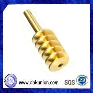 OEM Mini Brass Worm Gear Set pictures & photos