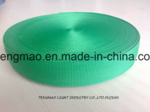 "1"" Grass Green PP Webbing for School Bags pictures & photos"
