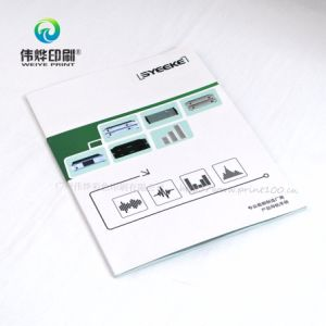 Customized Printing Brochure Use for Company Promotion pictures & photos