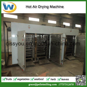 China Vegetable Fruit Fish Sea Food Drying Dryer Machine pictures & photos
