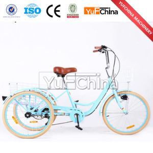 Good Quality 3 Wheel Adults Tricycle with Child Seat Sale pictures & photos