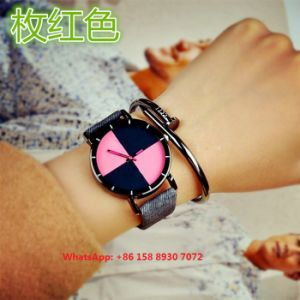 Popular Simple Quartz Watch with Leather for Women Fs596 pictures & photos