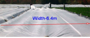 Non-Woven Frost Protection pictures & photos