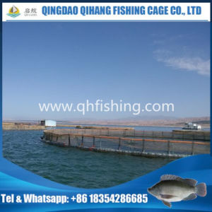 Agricultural Equipment, Barramundi Farming Fish Cage pictures & photos