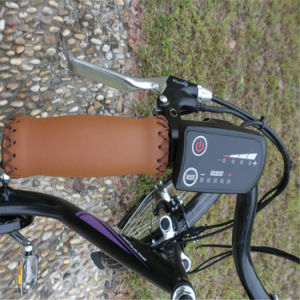"""Chinese Cheap 26""""City Electric Bike for Sale (RSEB-203) pictures & photos"""