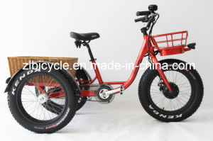 Cargo E-Bike pictures & photos