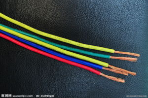 Car Wire Used in High Temperature Circuit of Vechile pictures & photos