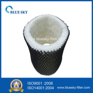 Humidifier Wick Filter of Filter B Hwf64 Series pictures & photos