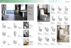 Sanitary Ware One-Piece Toilet (CE-T6010L1) pictures & photos