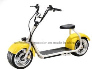 New Harley Style Electric Scooter with Big Wheels, Fashion City Scooter Citycoco