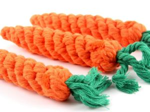 Carrot Pet Rope Toys for Small Pet Dog pictures & photos