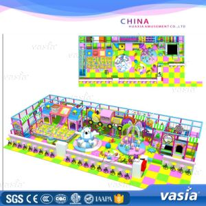 ASTM Standard Advanture Jungle Style Indoor Playground pictures & photos