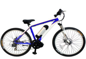 36V 250W Cool Electric Bike with Samsung Cell pictures & photos