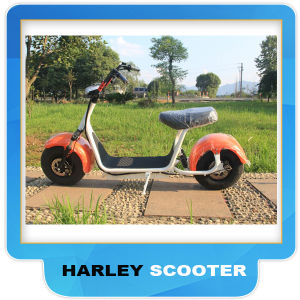 2017 Popular Harley Style Electric Scooter with Big Wheels, Fashion City Scooter Citycoco pictures & photos