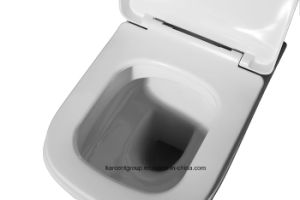 Wall Hung Toilet Wash Down Toilet Wh16020 pictures & photos