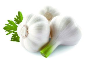 (Allicin) -Garlic Extract The Sterilization Allicin pictures & photos