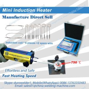 Nut Induction Heater pictures & photos