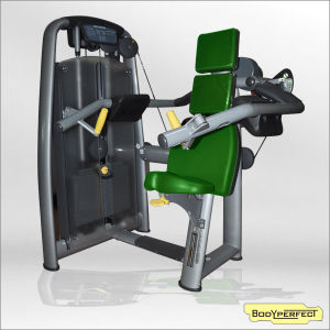 Fitness Equipment Professional Club Delt Machine Bft-2018/Body Building Equipment Fitness Club Shoulder Tainer Machine Strength Machine pictures & photos