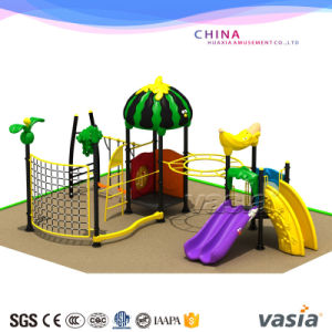 Outdoor Exercise Equipment Climbing Wall Playground Children Swing Outdoor Playground pictures & photos
