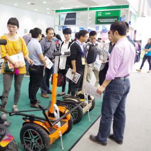 Newest off Road Electric Chariot Self Balancing Golf Scooter for Sale pictures & photos